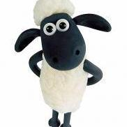 AnOther Sheep