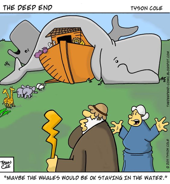 whales not in ark.jpg