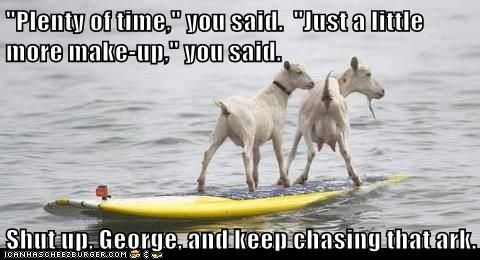chasing ark.jpg