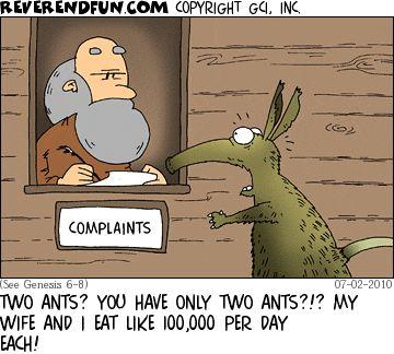 anteater complaint.jpg