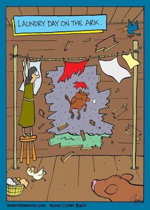 ark laundry day.jpg