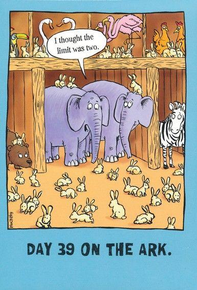 Rabbits on ark.jpg