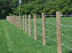 fence-post-250x183.jpg.c3862a7cbacc1a2c0426675b1c5331fa.jpg